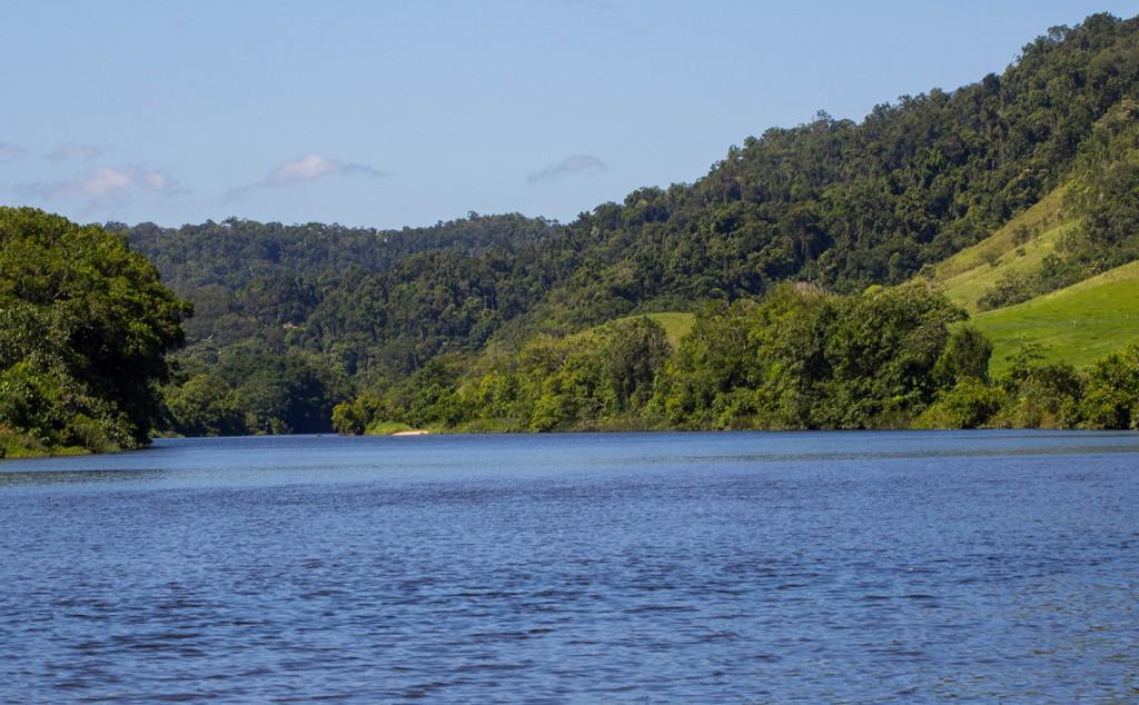 3 Daintree river