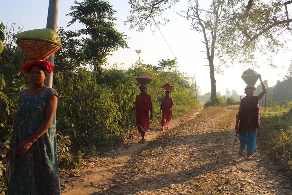 Vid skymning mötte jag ofta kvinnor på landsvägarna runt Bardia nationalpark. Foto: Josefine Nilsson