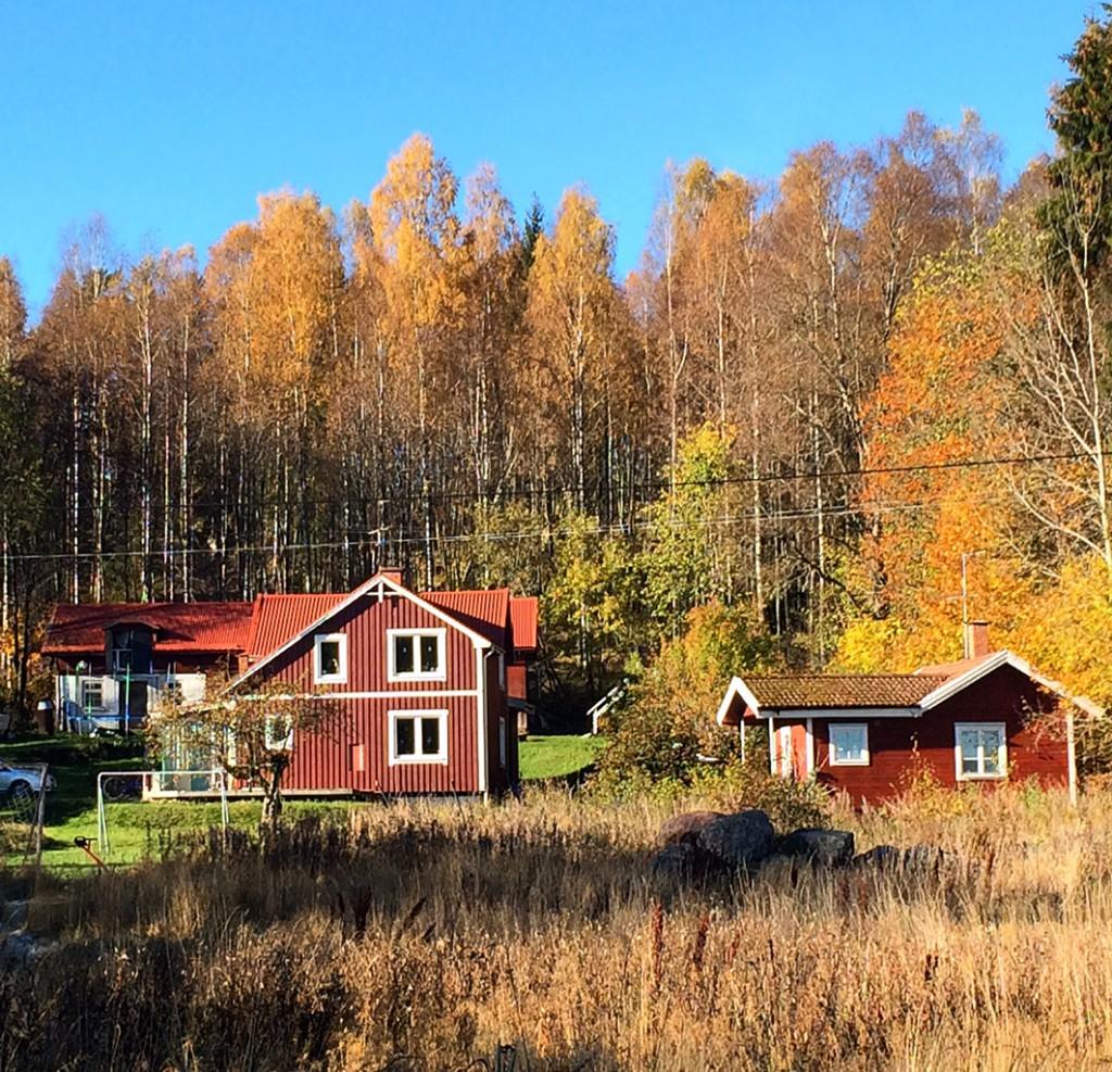 Familjen Thunberg säljer sitt älskade hus. Foto: Privat