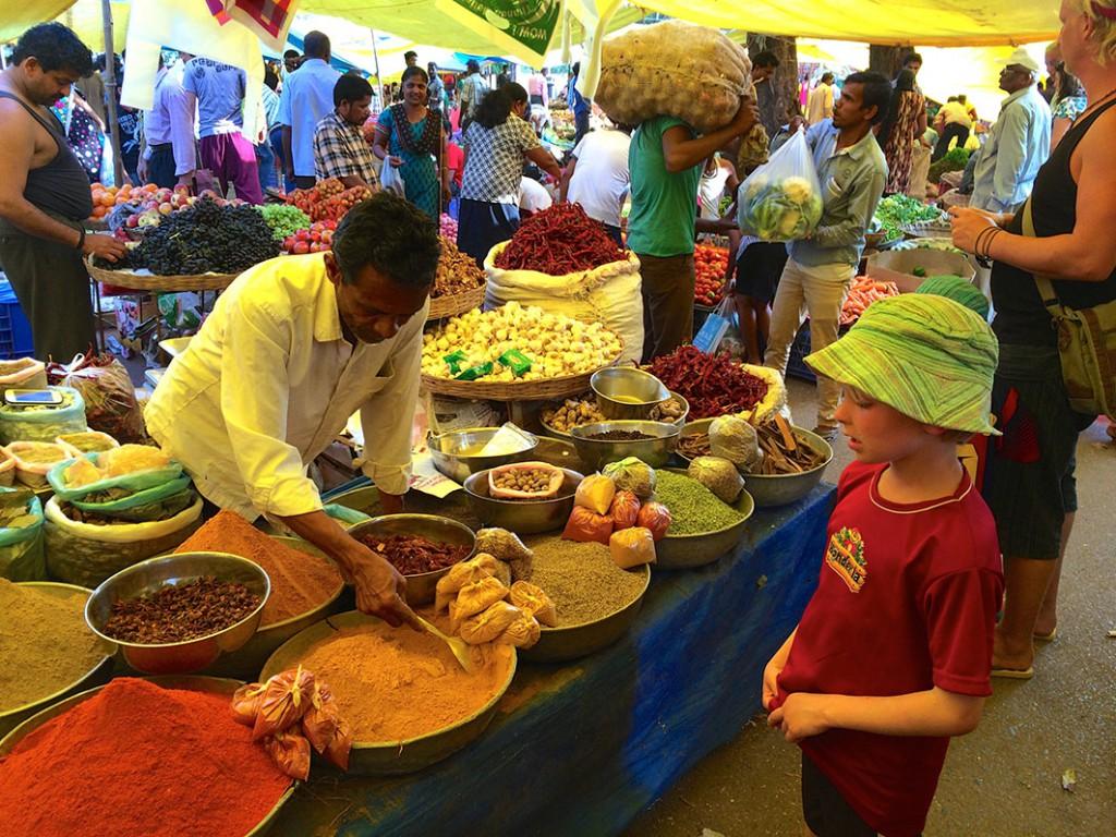 Milo på marknad i Indien. Foto: Privat