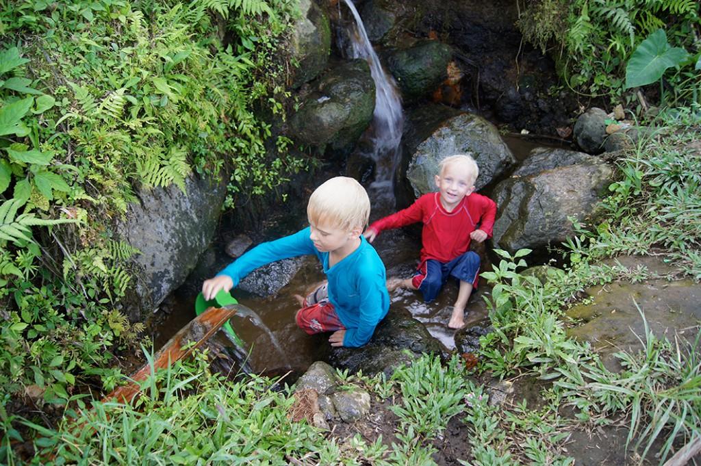 Milo och Jack badar i vattendrag bland risodlingarna på Balis landsbygd. Foto: Privat
