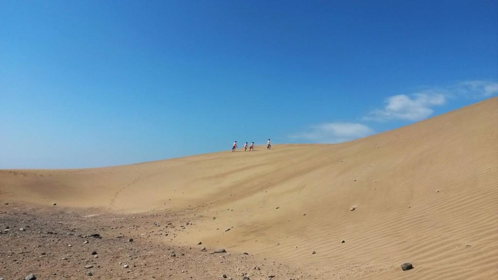 Hur spännande kan den torrbruna ön bli – tydligen mer än en kan ana. Foto: Joanna Wåhlin