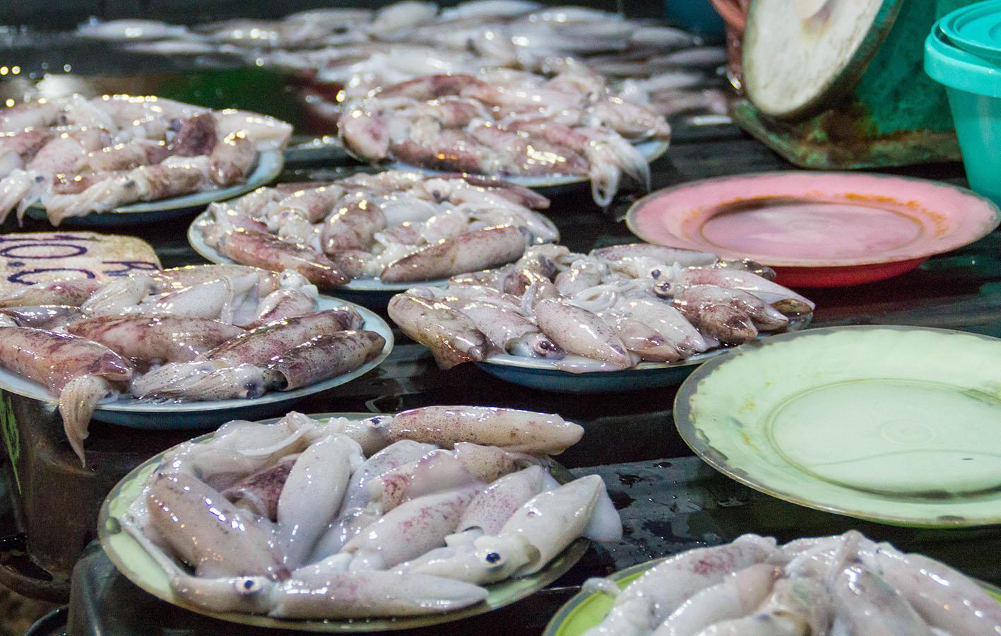 Bläckfisk