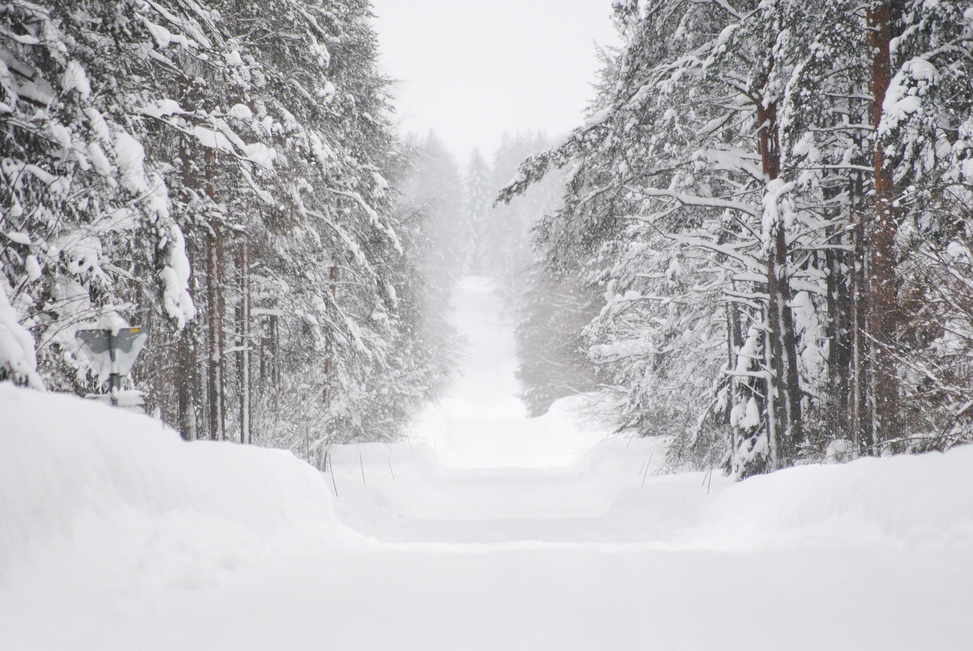 winter-1186395_1920