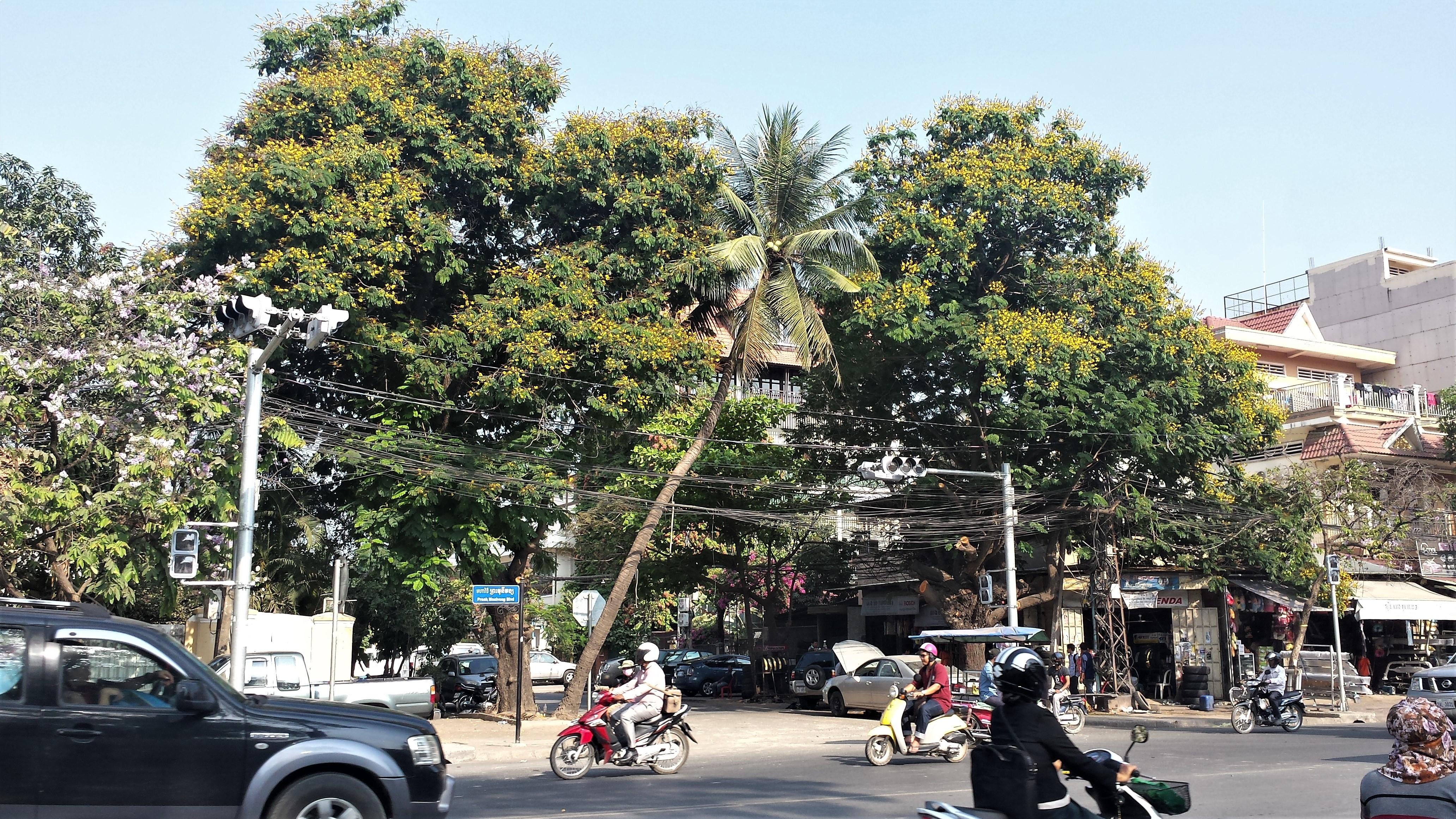 Phnom Penh Monivong