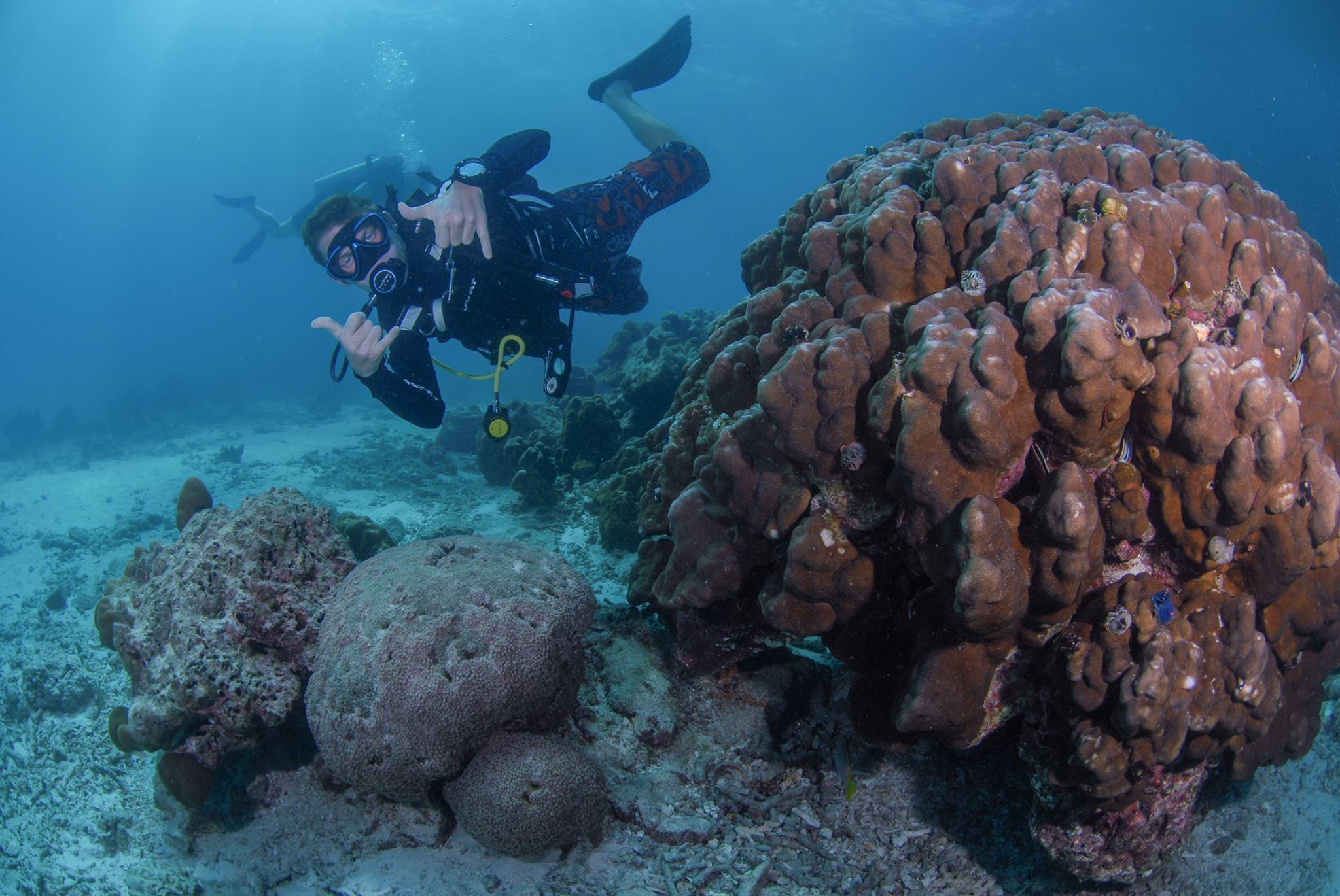 patrik dykning8